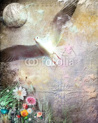 Flight in the dreams. fotolia