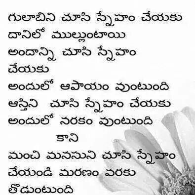 Quotes Telugu quotes Pinterest Telugu, Quotation and - new love letter format in telugu