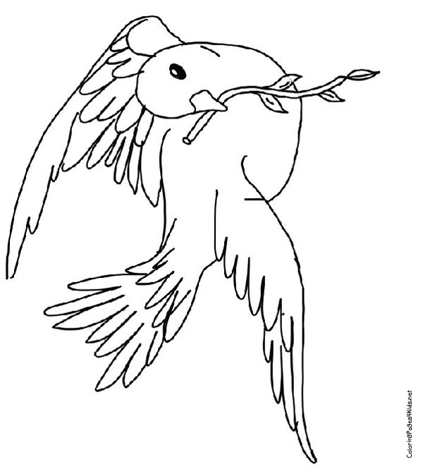Noahs Ark Coloring Pages PDF