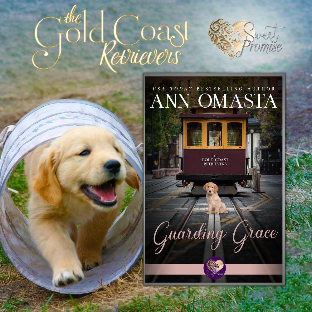 Gold Coast Retrievers Sweet Romance Plus Puppies
