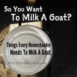 Goat Milking Supplies #GoatMilkingSupplies, #Goats, #MilkingGoats #AnimalsandLivestock
