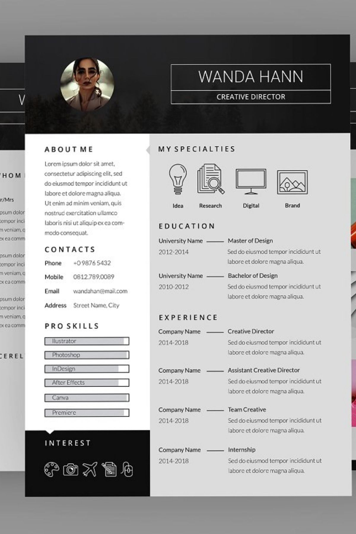 Delight CV Resume Designer. This layout is suitable for