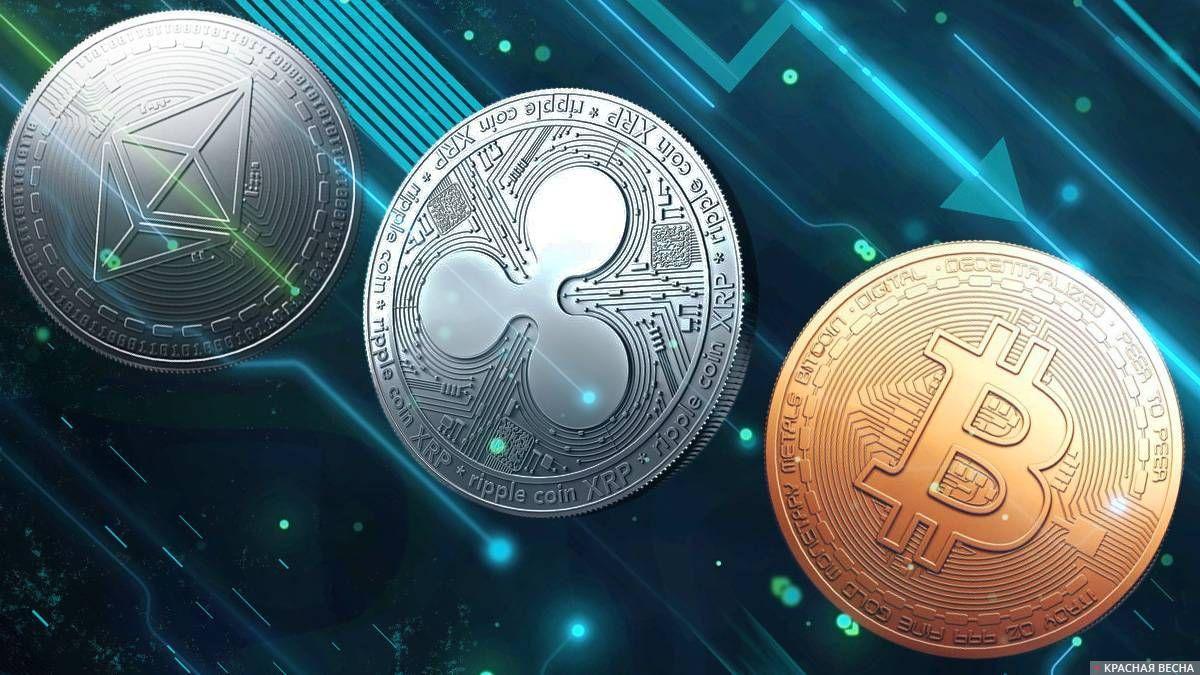 site- uri de pariuri care acceptă bitcoin