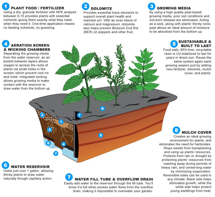 How Earthbox Works Junior Earthbox Earthbox Gardening Container Gardening