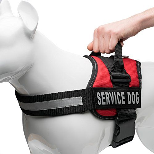 Service Dog Harness With Velcro Straps And Handle Available In 7