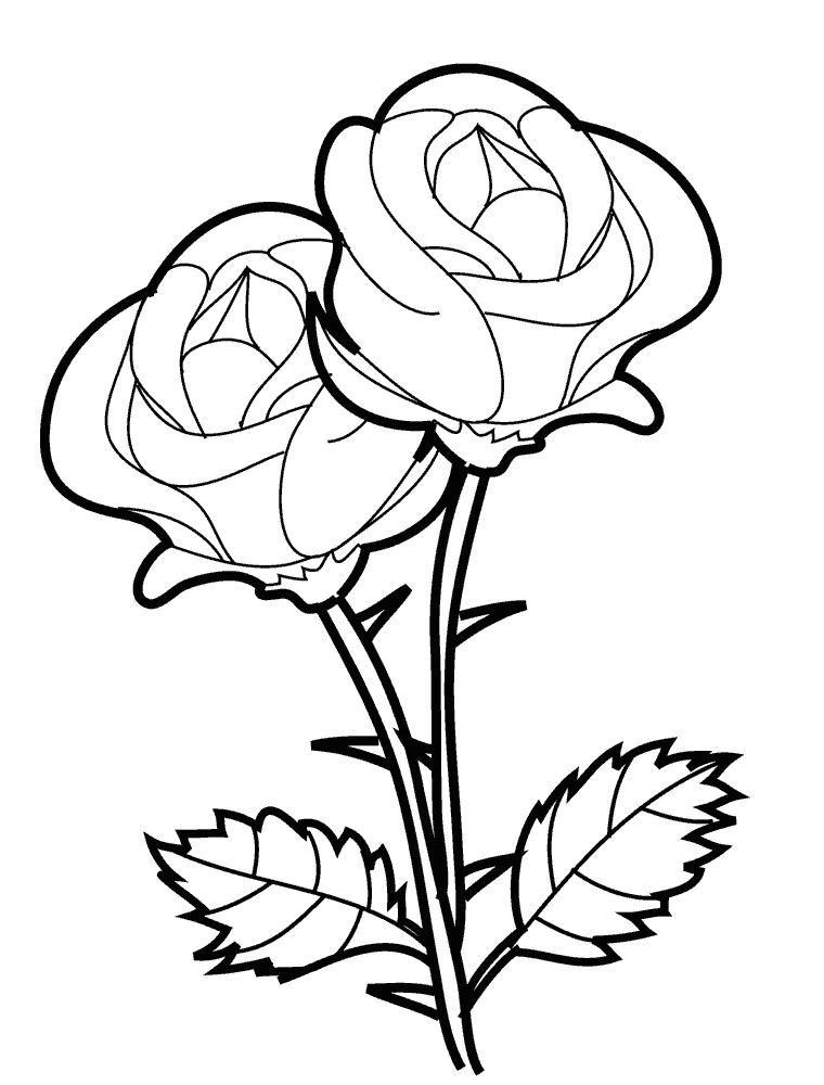 Roza Dva Cvetka Rozy Raskraska Raskraski Cvety Raskraski Mandala Risunki Cvetov Cvetochnye Raskraski