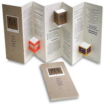 Business Card Brochure Design Accordion Fold Pop Up Books Artist