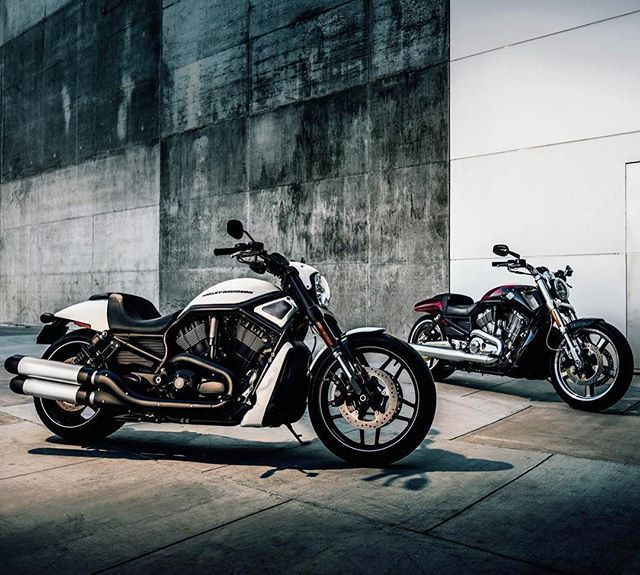 Double Trouble.  #VRodMuscle #NightRodSpecial #LiveYourLegend
