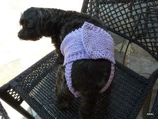 Bible Apologetic: PupPee Sheila Knit Diaper