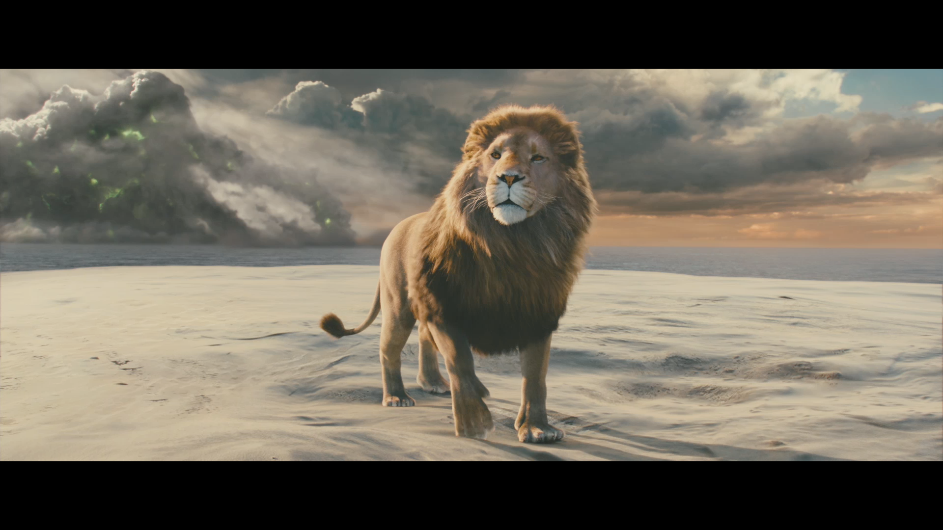 hd aslan narnia wallpaper | ololoshenka | Pinterest | Aslan narnia for Narnia Aslan Wallpaper  174mzq