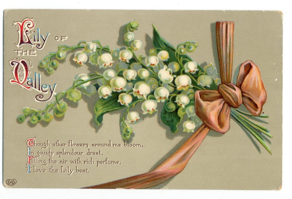 Lily of the valley flowerribbon bow1914 vintage greeting