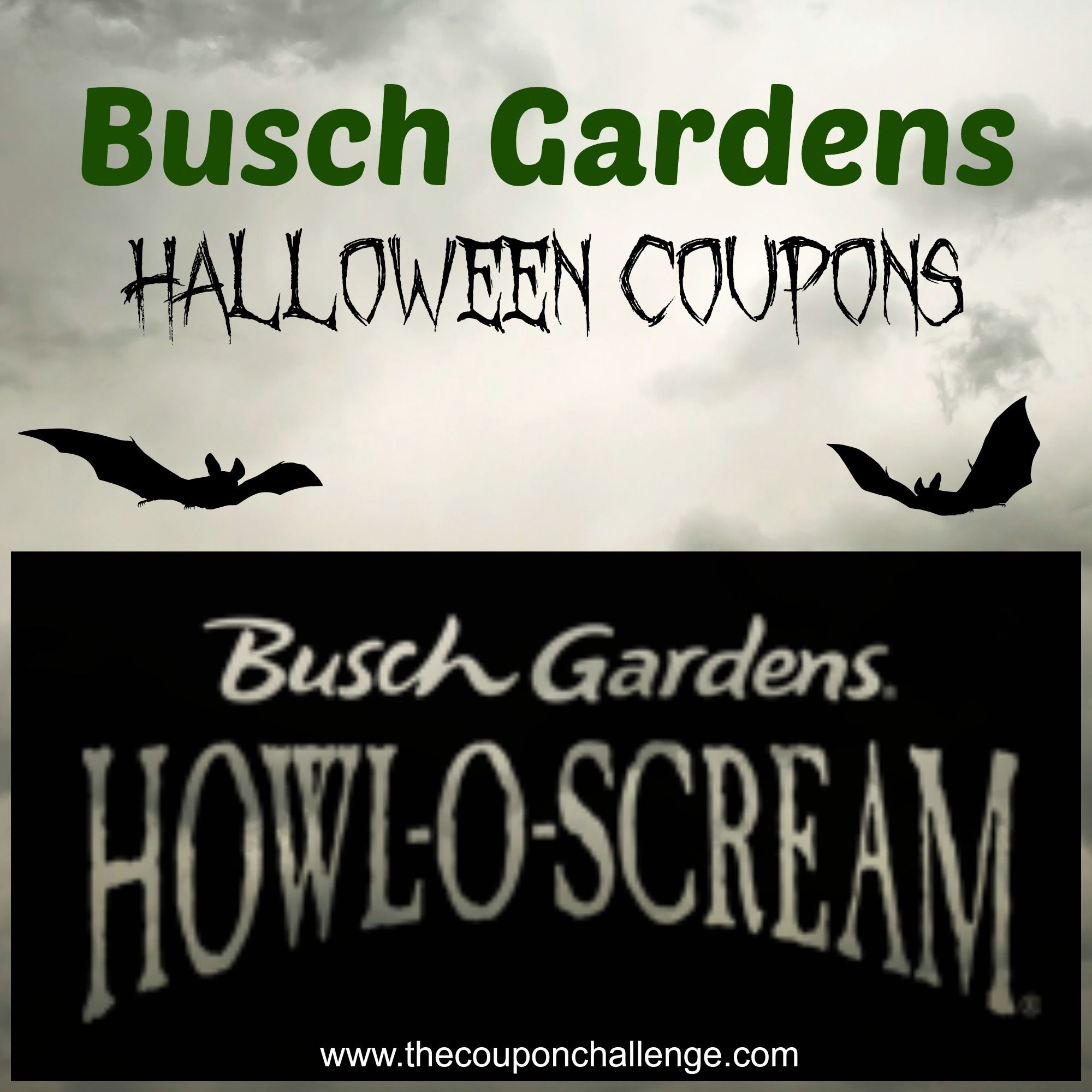 8406033745abbda7b41391ef0c9dda17 - Busch Gardens Howl O Scream Discount Coupons