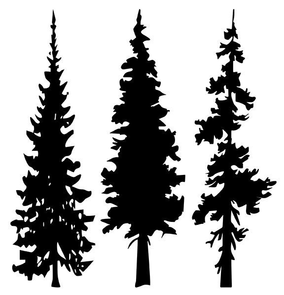 Line Art Of Tree : Tree line silhouette google search forest pinterest