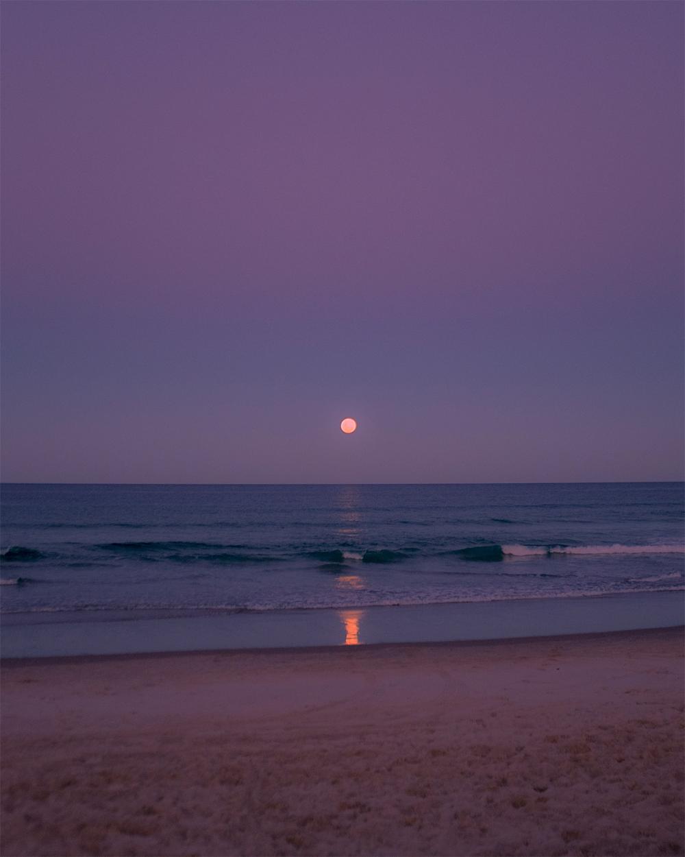 Photographer Spotlight: Sam Johnson