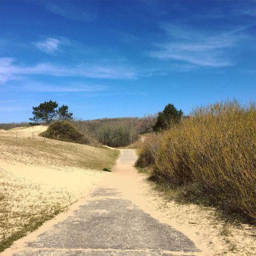cladelcroix:  Comme un parfum d'été  #perspective #beach...