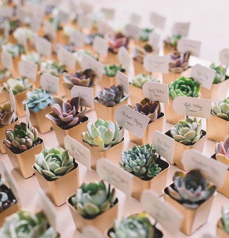 Sukkulenten zur Hochzeit – Ideen für originelle Gastgeschenke #hausdekowohnzimmer