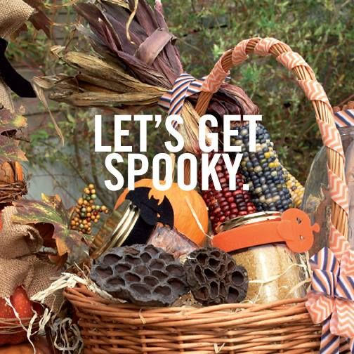 Halloween ONE-WRAP Ties at Lowes Home Improvement   www - lowes halloween