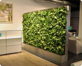 Pflanzenwand als raumteiler ideen f r den messestand - Zimmerpflanzen gestaltungsideen ...