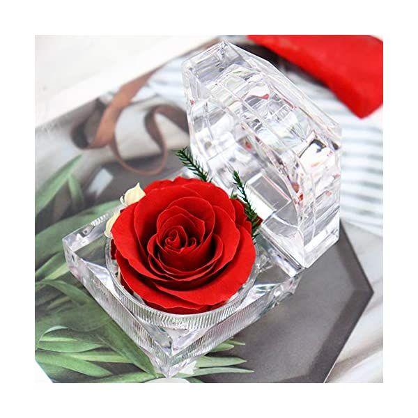 Preserved Fresh Flower Eternal Rose with Acrylic Crystal ...