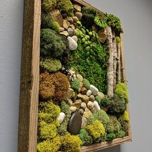 "15""x12"" Moss Wall Art Home Decor Vertical Garden Preserved Moss, Birch Branches, Barn Wood Frame. Ready to ship -   22 garden design Wall art ideas"