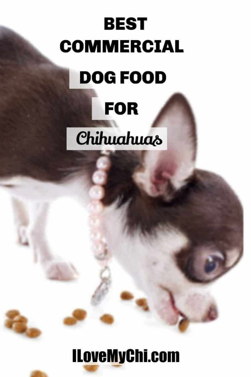 Best Commercial Foods For Chihuahuas Chihuahua Dogs Clothes Chihuahua Dog Food Recipes