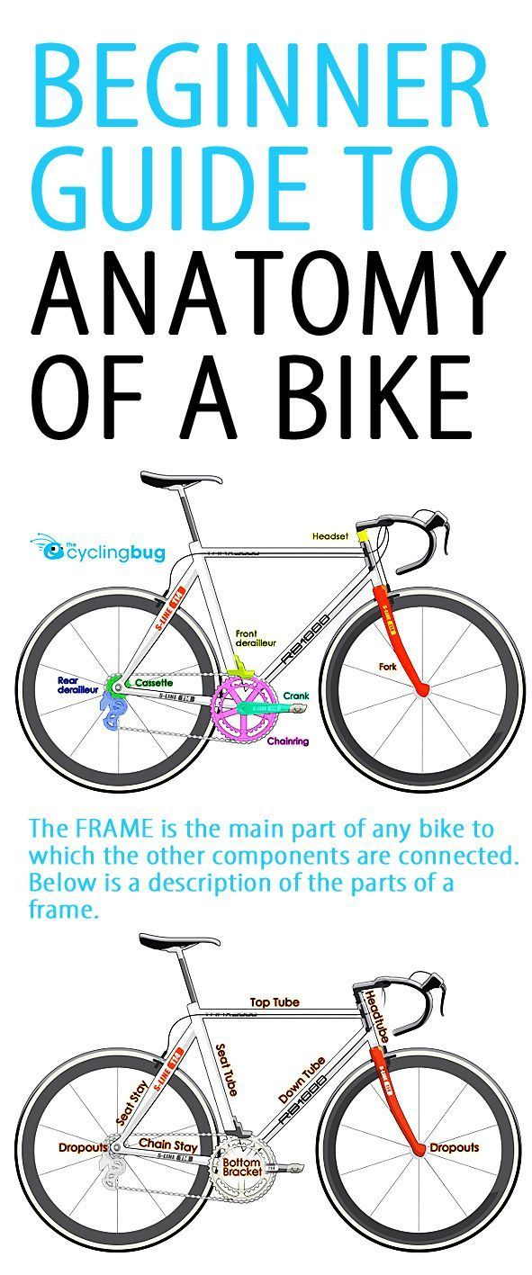 Beginner guide to anatomy of a bike. Never again do you have to be ...