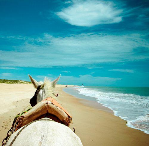 explore #brazil