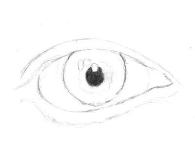 how to draw a realistic human eye step by step
