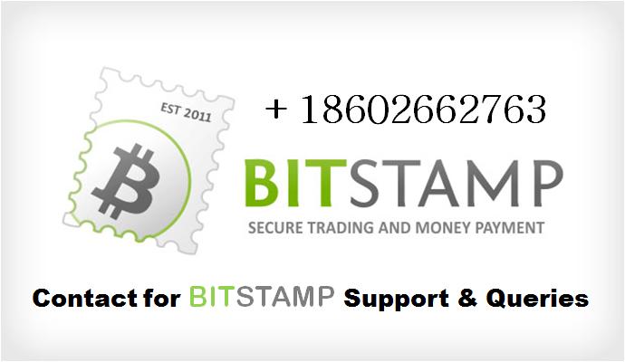 bitstamp support number