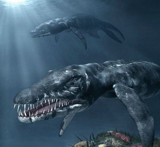exposición depredadores prehistoricos del mar - Buscar con Google