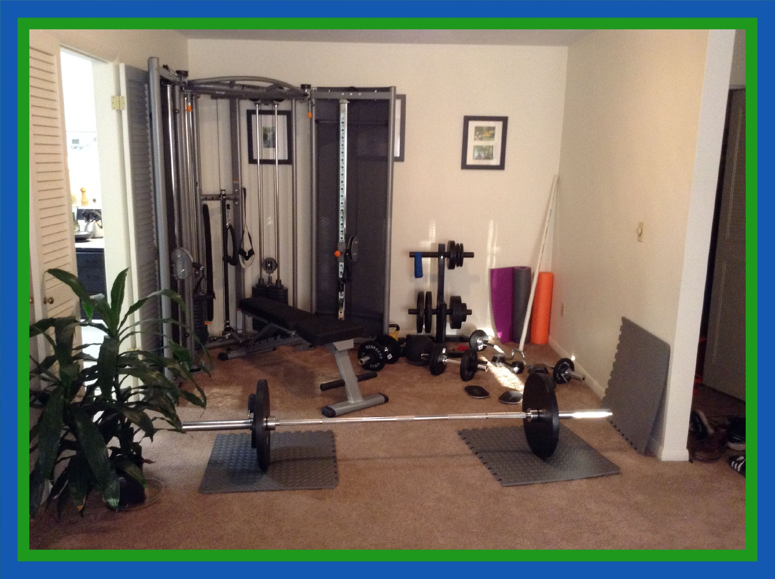 Build A Home Gym And Save Money Todd Marsh Fitness Cost Of Laminate Flooring Best Flooring Home Gym Flooring