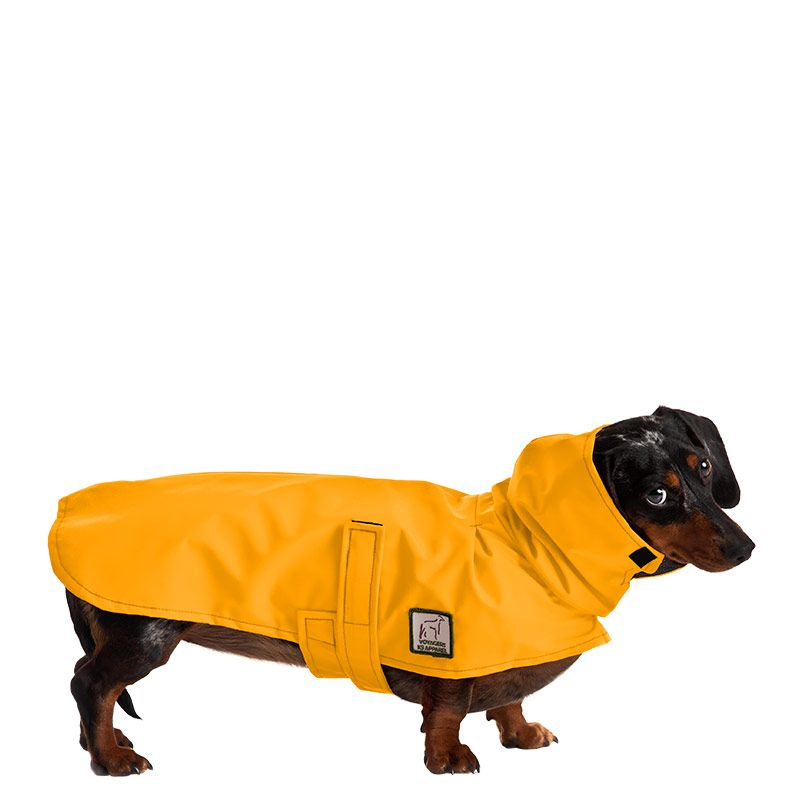 Miniature Dachshund Rain Coat Dog Coats Dachshund Dog