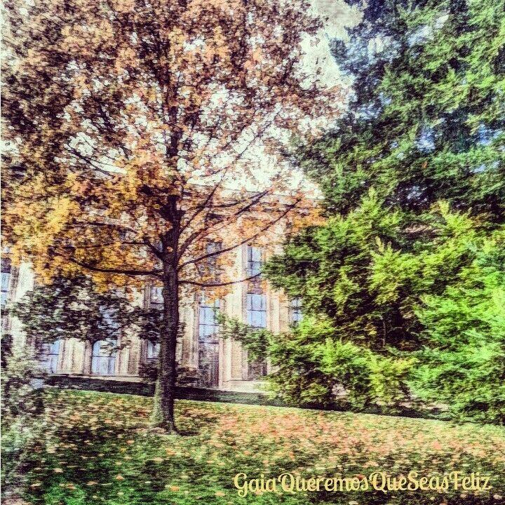 """La naturaleza hace grandes obras sin esperar recompensa alguna"". A. Herzen  ♧Muy feliz miércoles para todos♧ 《#paris #francia #france》  #spiritual #faith #faithful #grace #pray #amen #believe #coexist #spirituality #trust #peace #calm #mind #soul #hope #destiny #wisdom #compassion #forgiveness #thankful #knowledge #meditation #life #meditate #guidance #namaste #GaiaQueremosQueSeasFeliz"
