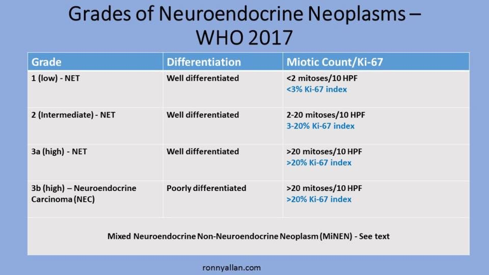 Pin By Linda Pillsbury On Net Cancer Neuroendocrine Cancer Carcinoid Syndrome Tumor