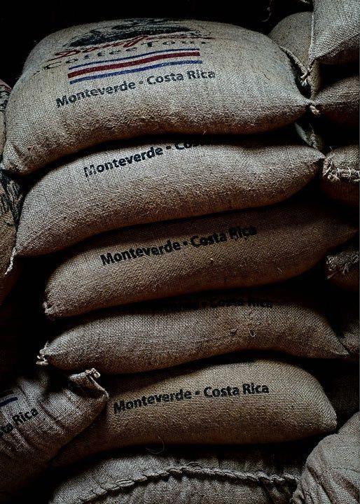 Coffee Bean Flower Barra de cafe, Cocina costarricense