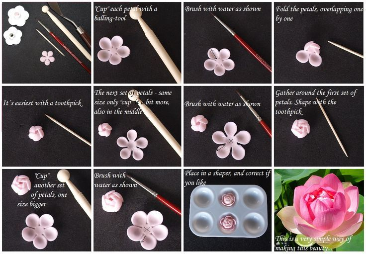 How To Make A Lotus Flower Out Of Clay Ceramics Fondant Tutorial
