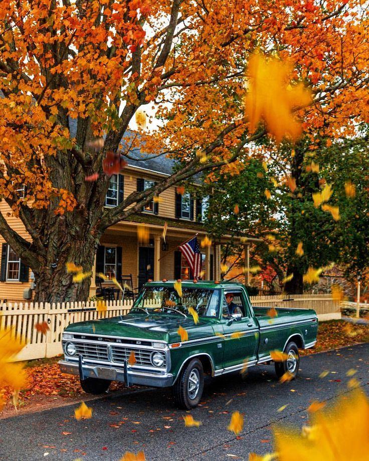 . Herbstgefühle #autumnfeelings #autumnleavesfalling