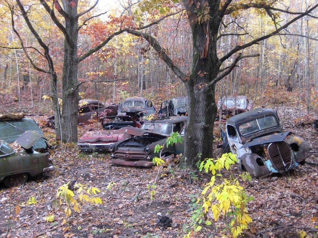 Dodge Truck Salvage Yards >> Hillard Auto Salvage | Rusty cars, Abandoned cars, American classic cars