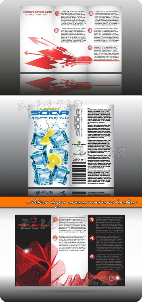 Modern Design Vector Promotional Brochure Design