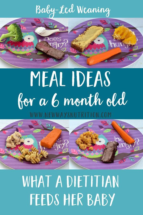 6 Month Old Baby Food Ideas- Lunch!