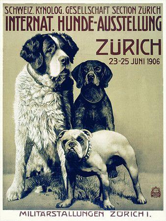 Zurich 1906 Dog Show Dog Poster Retro Dog