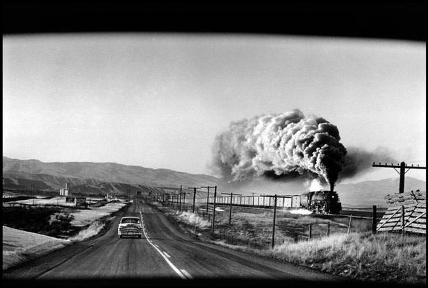 Magnum photos photographer portfolio elliot erwitt