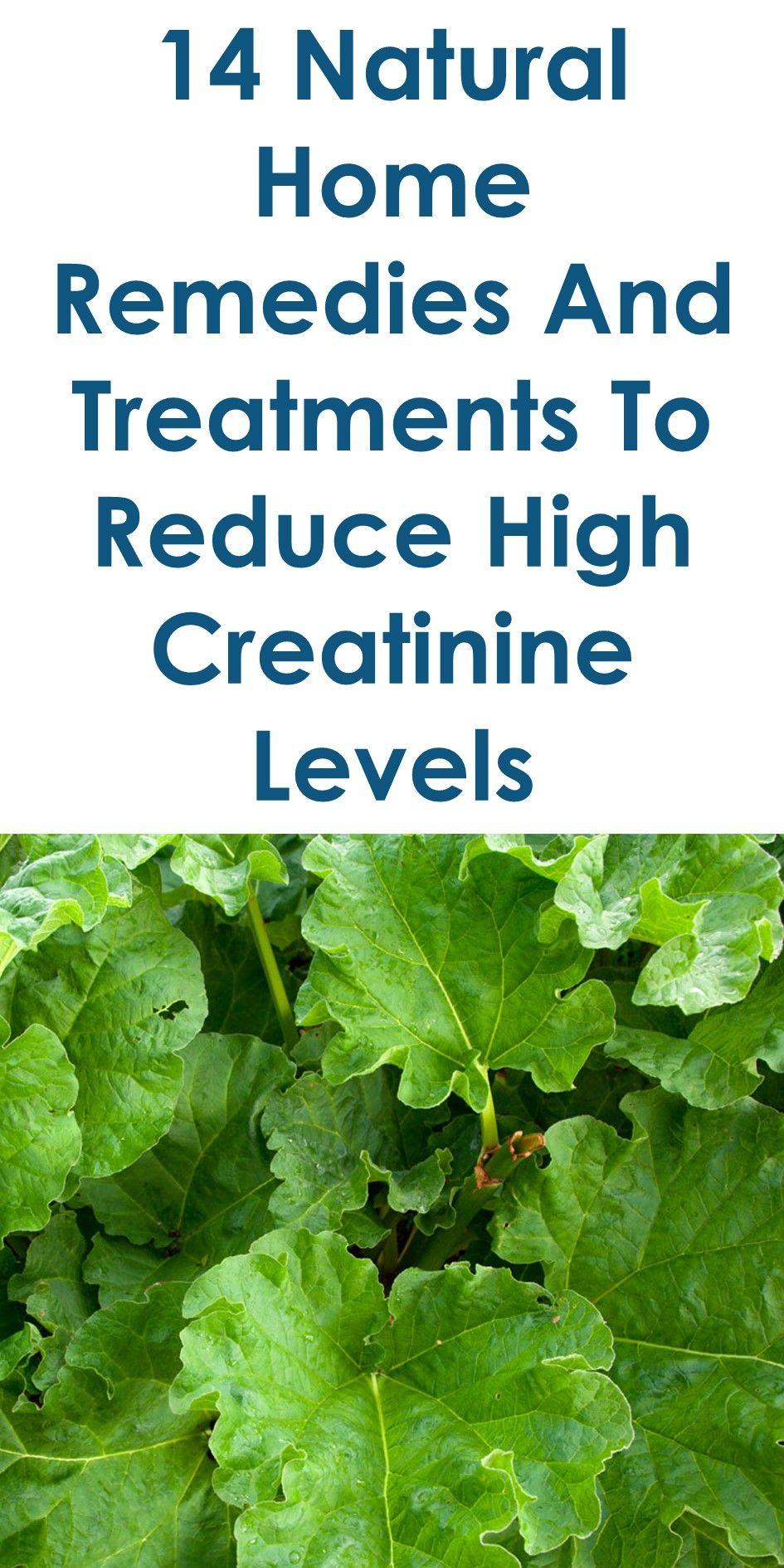 creatinine levels in blood high protein diet