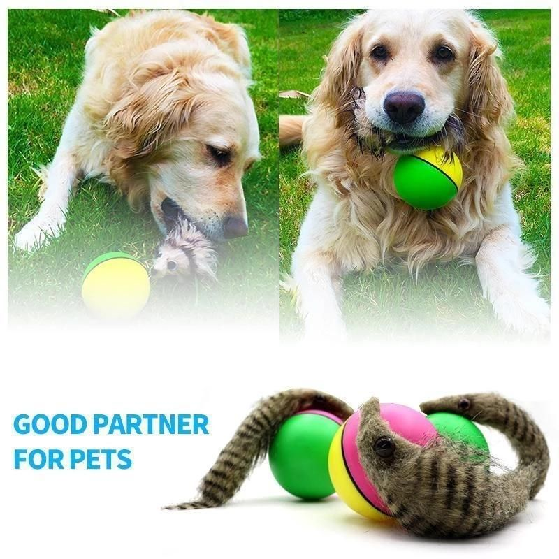 Jumping Rolling Chasing Moving Pet Toys Haustierspielzeuge