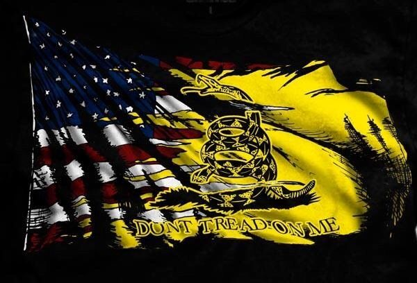 Pin By Johnnie Sanders On Real Heroes Military Humor Dont Tread On Me Art Respect The Flag
