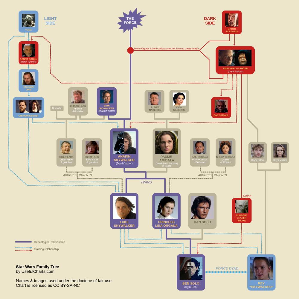 Star Wars Family Tree Episode 9 (Spoilers!) | Star wars family tree, Star wars padme, Star wars pictures