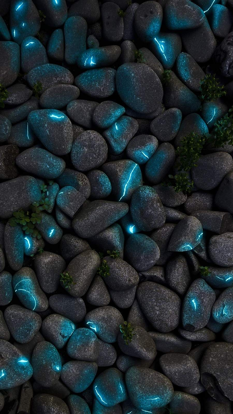 Neon Stone Pebbles - iPhone Wallpapers