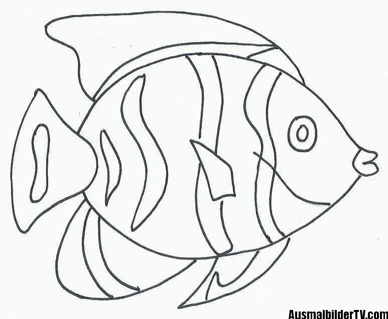 Ausmalbilder Fische Gratis Free Coloring Pages Coloring Pages