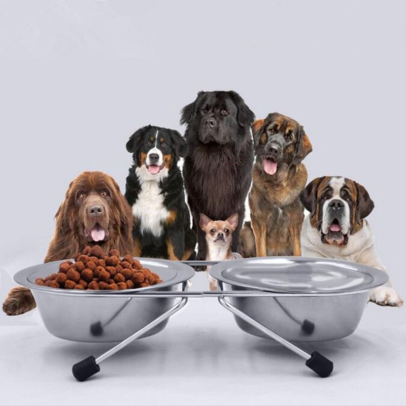 Pet Feeder Pet Dog Stainless Steel Food Bowl Double Feeding Bowl With Non Slip Bracket Small Medium Large Dog Feeding Bowl Dog Names Dog Friends Puppy Friends
