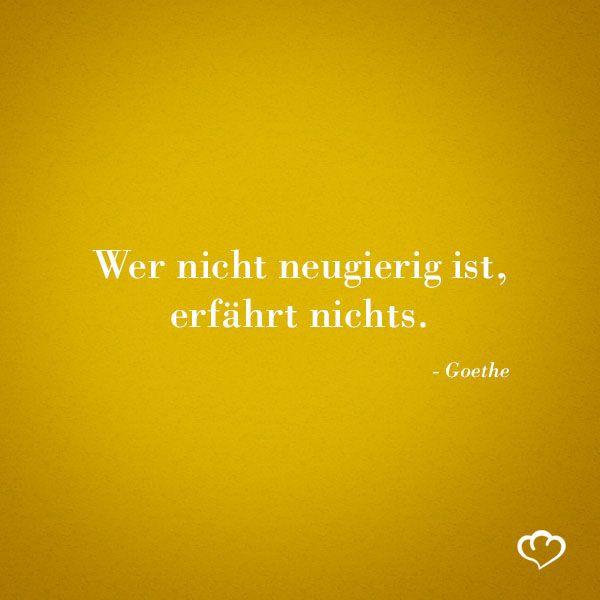 Zitat Goethe Sprüche Pinterest German Quotes Quotes